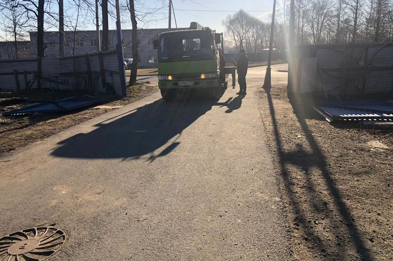 Нижняя дорога в Петергофе