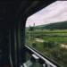 В Генплан Петербурга добавят объекты железной дороги и городские леса