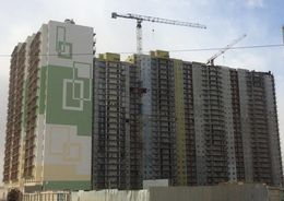 Проблемные дома в Шушарах введут в октябре