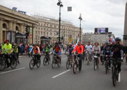 В Петербурге создадут три новых веломаршрута