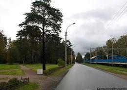 В Комарово построили первый в Петербурге  частный пансионат для пожилых людей