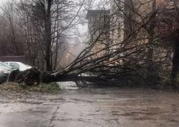 В Петербурге вновь усилится ветер