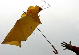 В Ленобласти ожидается шквалистый ветер