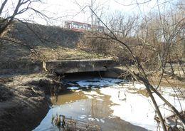 Муринский ручей ожидает масштабная чистка