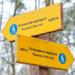 Ленинградская область расширяет сеть экотроп в заповедниках