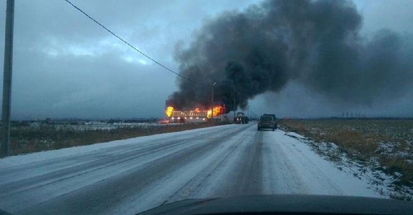 В районе Московского шоссе сгорела конюшня