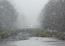 Петербург и Ленобласть засыпало снегом