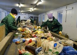 В Ленобласти начнут сортировать мусор