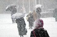В Петербурге ожидается метель