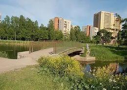 Защитники парка Александрино выйдут на проспект Стачек