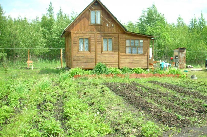 В правительстве РФ рассмотрят законопроект о порядке предоставления земли под дачи