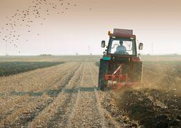 На продажу выставлен сельскохозяйственный кооператив в Псковской области