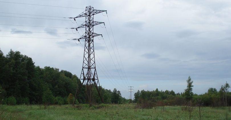 В Ленобласти реконструируют высоковольтку