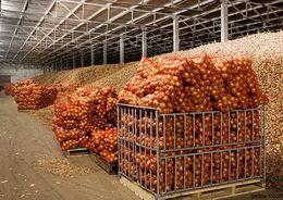 Под Новгородом строят агрокомплекс  стоимостью в 1,5 млрд рублей
