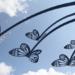 В Волхове в парке им. Ю. Гагарина поселились «бабочки»