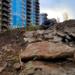 За три месяца со свалок Полюстрово вывезено около 180 тыс. куб. м мусора