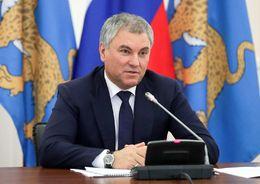 Володин Вячеслав Викторович