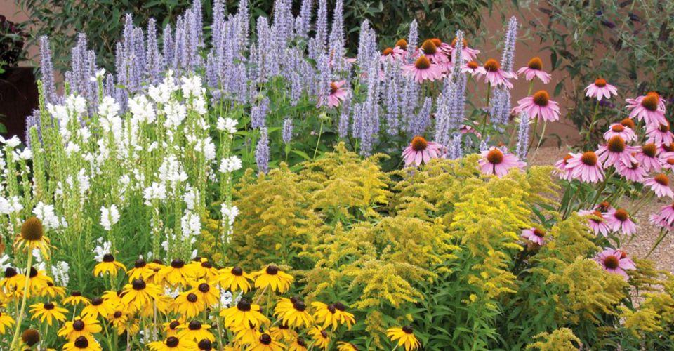 Цветники на садовом участке